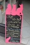 """10.IX.15 MITO per la città Libreria il gatto immaginario • <a style=""""font-size:0.8em;"""" href=""""http://www.flickr.com/photos/28437914@N03/21297801426/"""" target=""""_blank"""">View on Flickr</a>"""