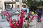 """16.IX.2021 MITO per la città, Centro di Prima Accoglienza Massaua • <a style=""""font-size:0.8em;"""" href=""""http://www.flickr.com/photos/28437914@N03/51486392411/"""" target=""""_blank"""">View on Flickr</a>"""