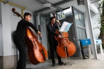 """18.IX.21 MITO per la città - DoubleBass – Duo di contrabbassi • <a style=""""font-size:0.8em;"""" href=""""http://www.flickr.com/photos/28437914@N03/51491741397/"""" target=""""_blank"""">View on Flickr</a>"""